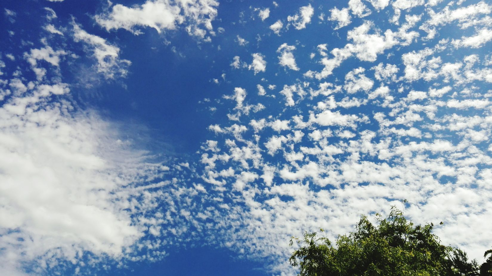 Taking Photos Check This Out Sky And Clouds Cloudporn White Clouds And Blue Sky Blue Sky July 2016 See What I See How Is The Weather Today? Summer 2016 Clouds And Sky Showcase July Summer Feeling Summer