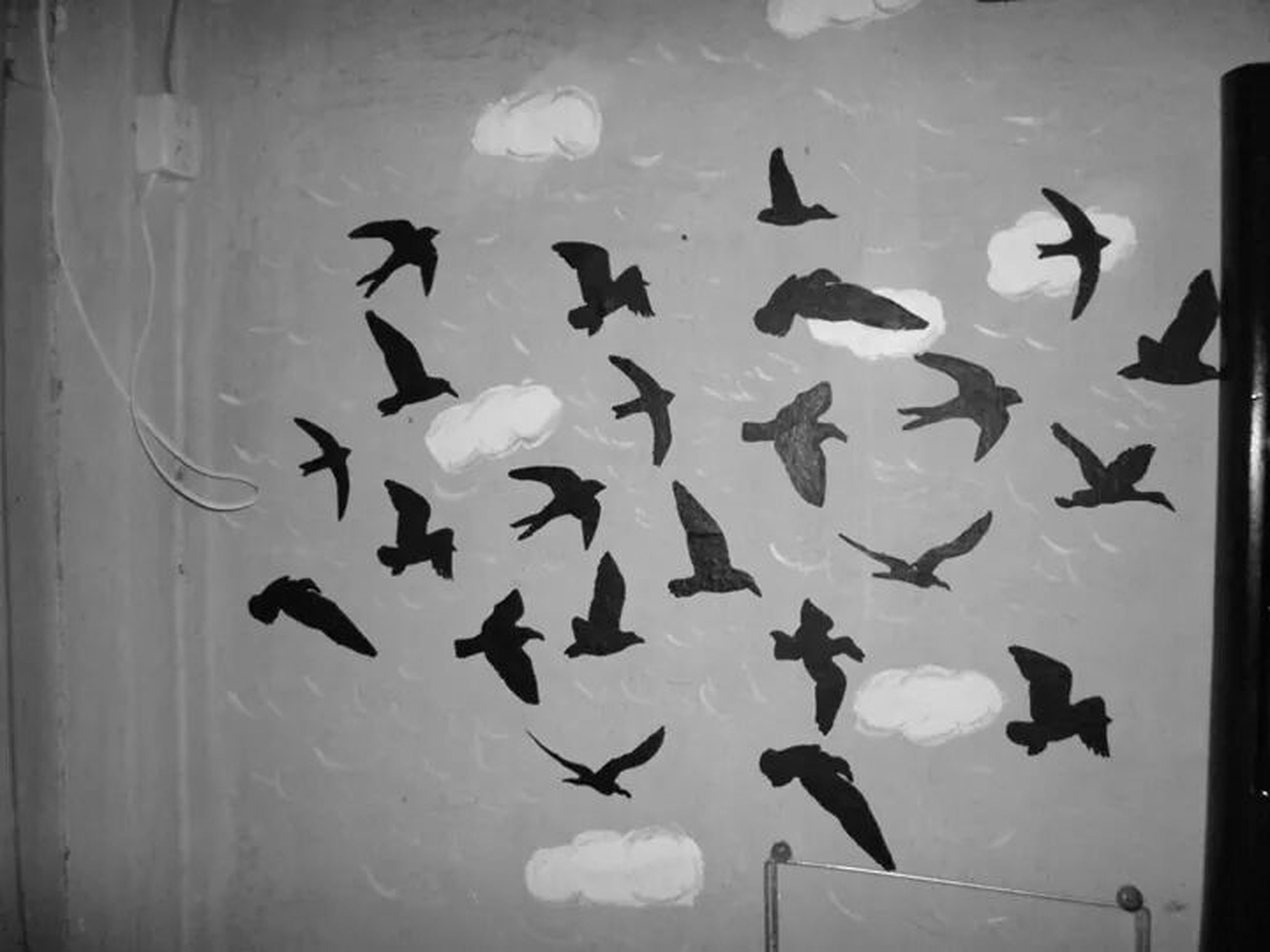 bird, animal themes, animals in the wild, wildlife, flying, flock of birds, low angle view, spread wings, indoors, mid-air, pigeon, medium group of animals, togetherness, sky, no people, nature, avian, day, glass - material