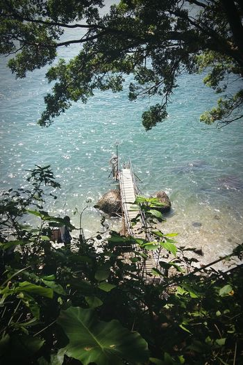 Water Outdoors Tree Lake Nature Nautical Vessel Beauty In Nature Sky Sunshine Air Clean Blue And Green Nature - Hong Kong 西環泳柵