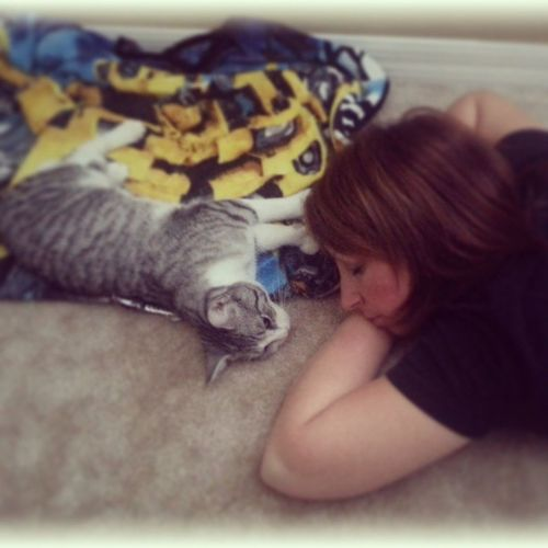 Love this little guy Isaac Hemmingwaycat Extratoes Naptime Saturdayafternoon  kitten