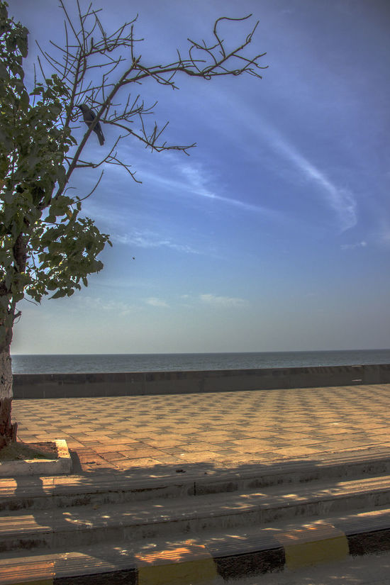 Beach Beauty In Nature Branch Cloud Cloud - Sky Colourful Life Conceptual Photography  Day Horizon Over Water Idyllic Nature No People Outdoors Remote Scenics Sea Shore Showcase March : Sky Tranquil Scene Tranquility Tree Water