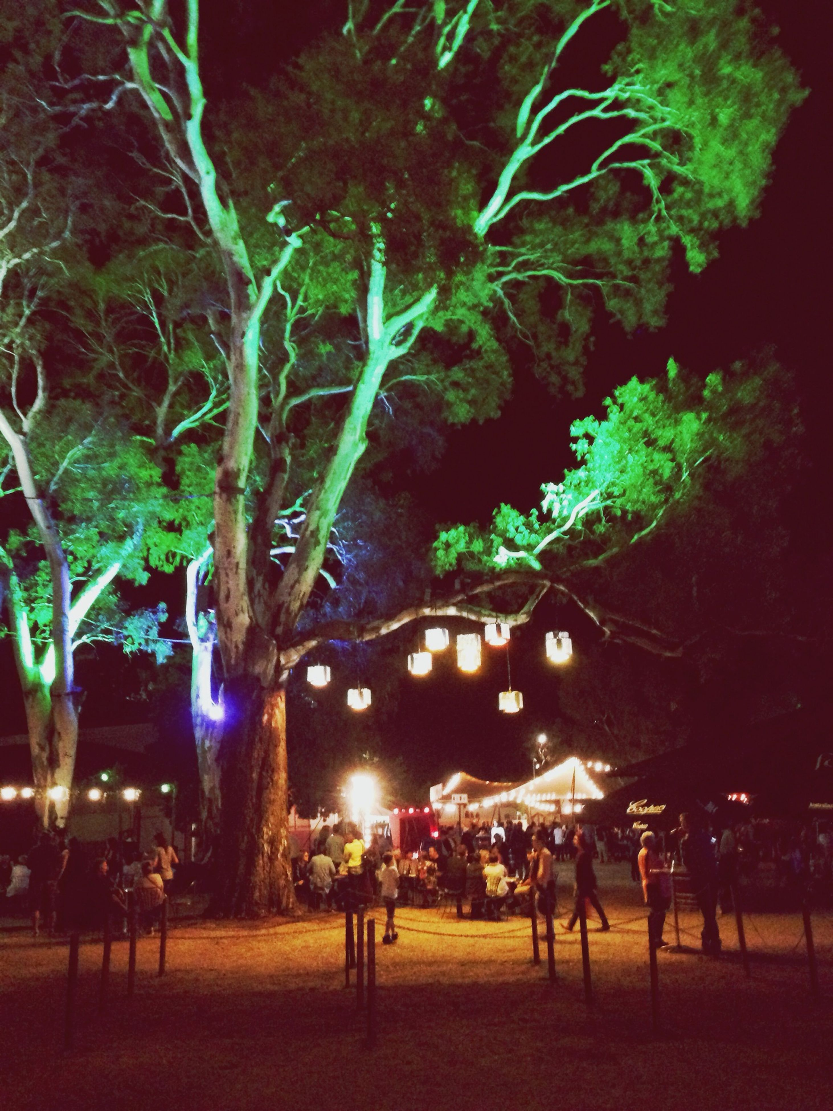 illuminated, night, tree, celebration, lighting equipment, arts culture and entertainment, decoration, christmas, incidental people, outdoors, street light, large group of people, tradition, light - natural phenomenon, leisure activity, building exterior, sky, men, lifestyles