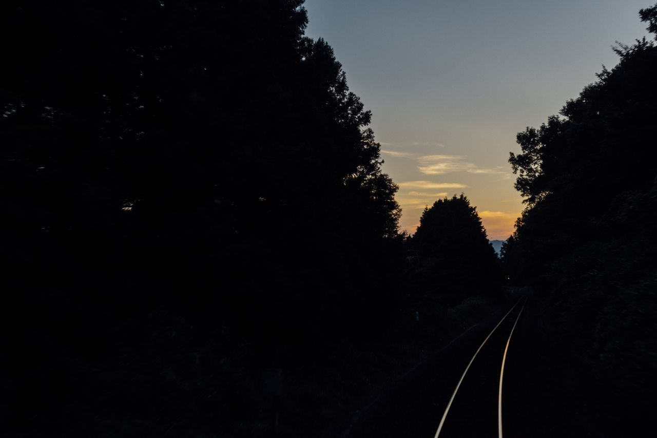 The End Of Summer Sunset Evening Evening Sky Railroad Track Local Train Travel Capture The Moment Tree Railroad Track Silhouette Beauty In Nature Evening Time August 2016 Sky And Clouds Red Sky At Sunset Sunset And Clouds  Railway Track Local Transportation Good Bye Summer