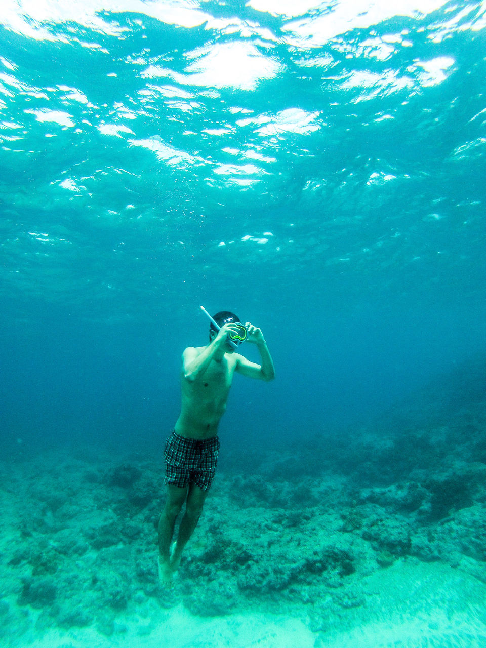underwater, real people, undersea, one person, adventure, sea, full length, shirtless, lifestyles, swimming, leisure activity, exploration, water, day, nature, scuba diving, sea life, beauty in nature, young adult, outdoors, animal themes, people