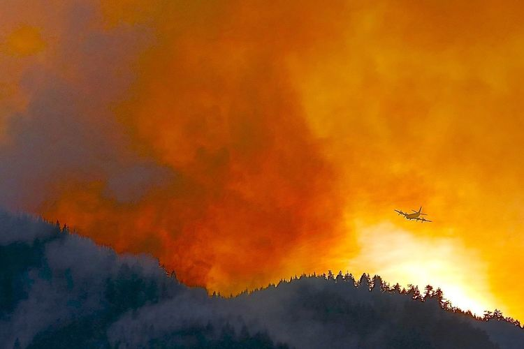 FireFighting  Smoke Airplane Airplane And Sky Fight Forest Fire Flying Forest Fire Forest Firefighting Mid-air No People Silhouette Smoke And Fire Sky Smoke Filled Sky Water Bomber