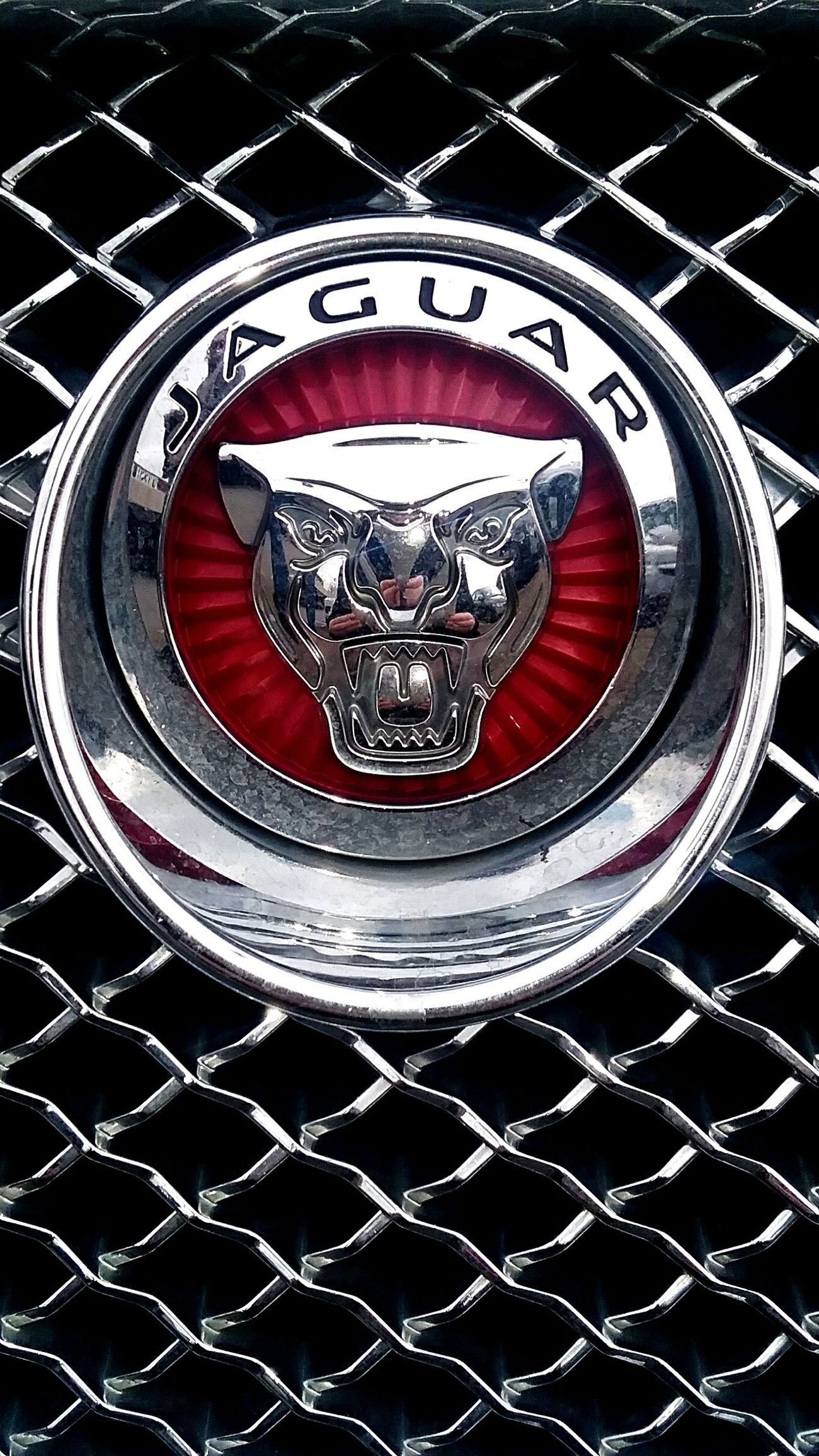 Day 50: Jaguar 365DaysOfAwesomeness PhotographyProject Day50 Luxary Cars JAGUAR Pattern Close-up