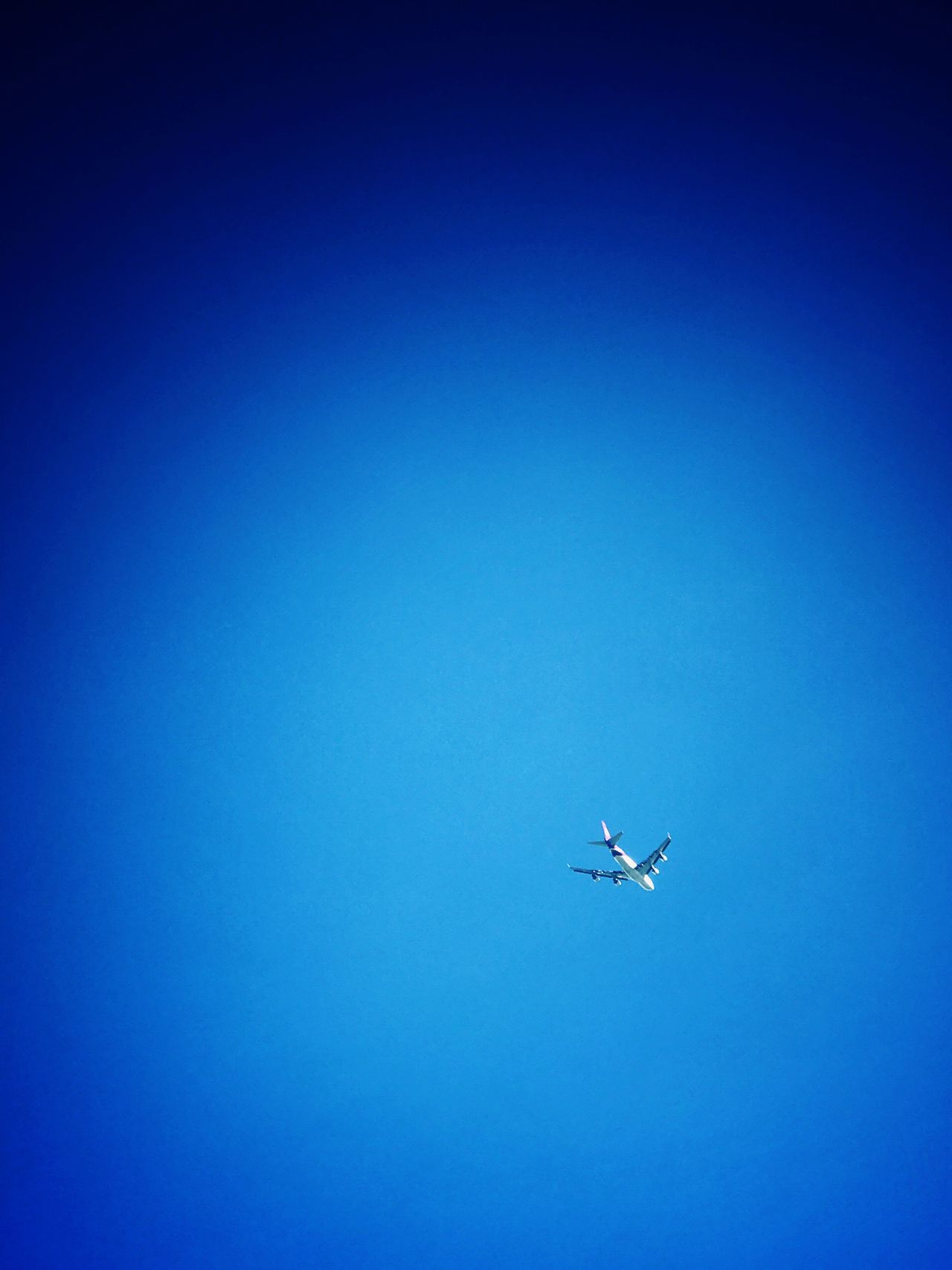 Flying High fly to somewhere Flying Blue Clear Sky Airplane Transportation Aircraft Mid-air Airways Flight Journey No People Nature Air Vehicle Day Outdoors Beauty In Nature Animal Themes Sky Airplane Wing