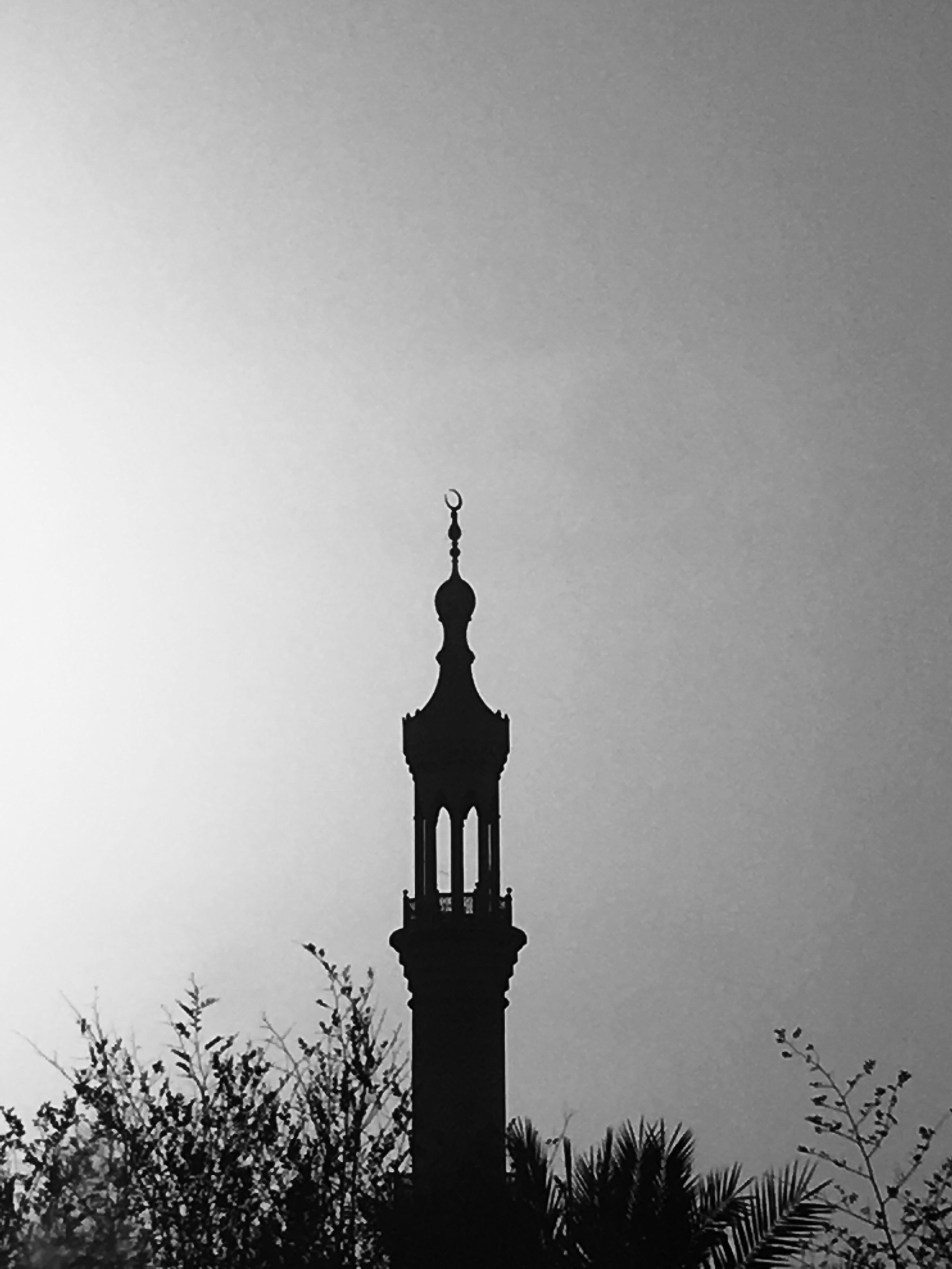 silhouette, low angle view, copy space, clear sky, high section, outline, outdoors, day, sky, treetop, no people, history, spire
