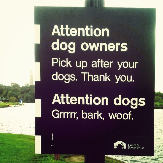 Signage Typography Dogs