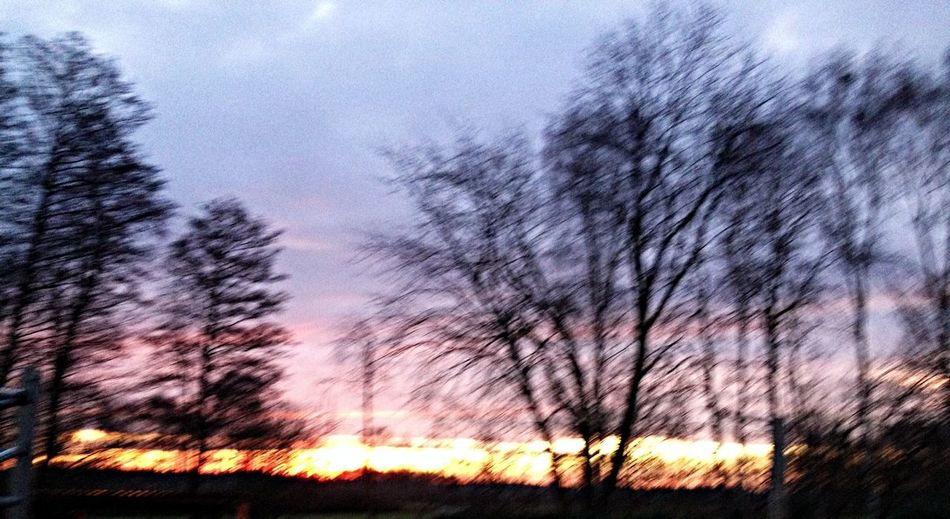 Hugging A Tree Sonnenuntergang ❤