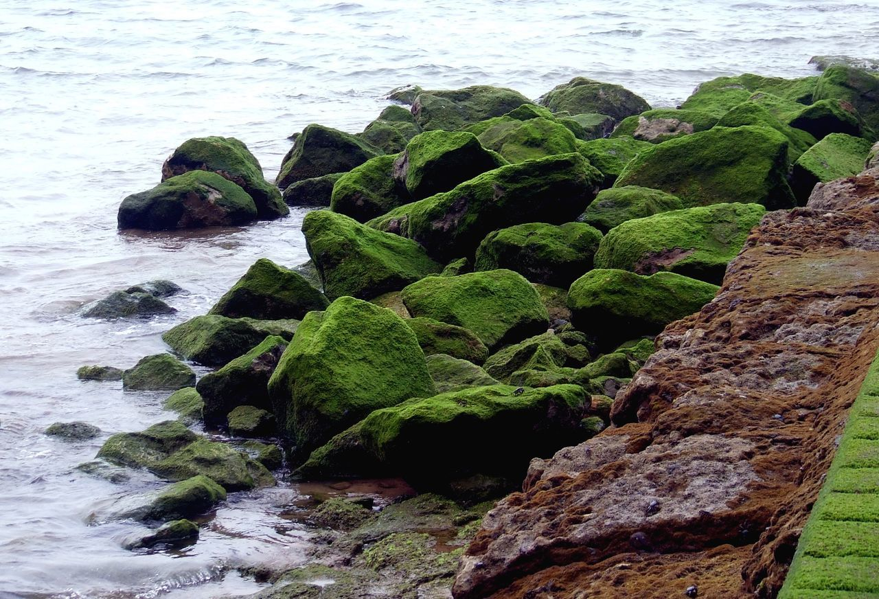Basque Coast Basque Country Beauty In Nature Cantabric Sea Cantábrico Coastline Green Color Idyllic Moss Natural Pattern Nature Rippled Rock Rock - Object Rock Formation Sea Tranquil Scene Tranquility Water