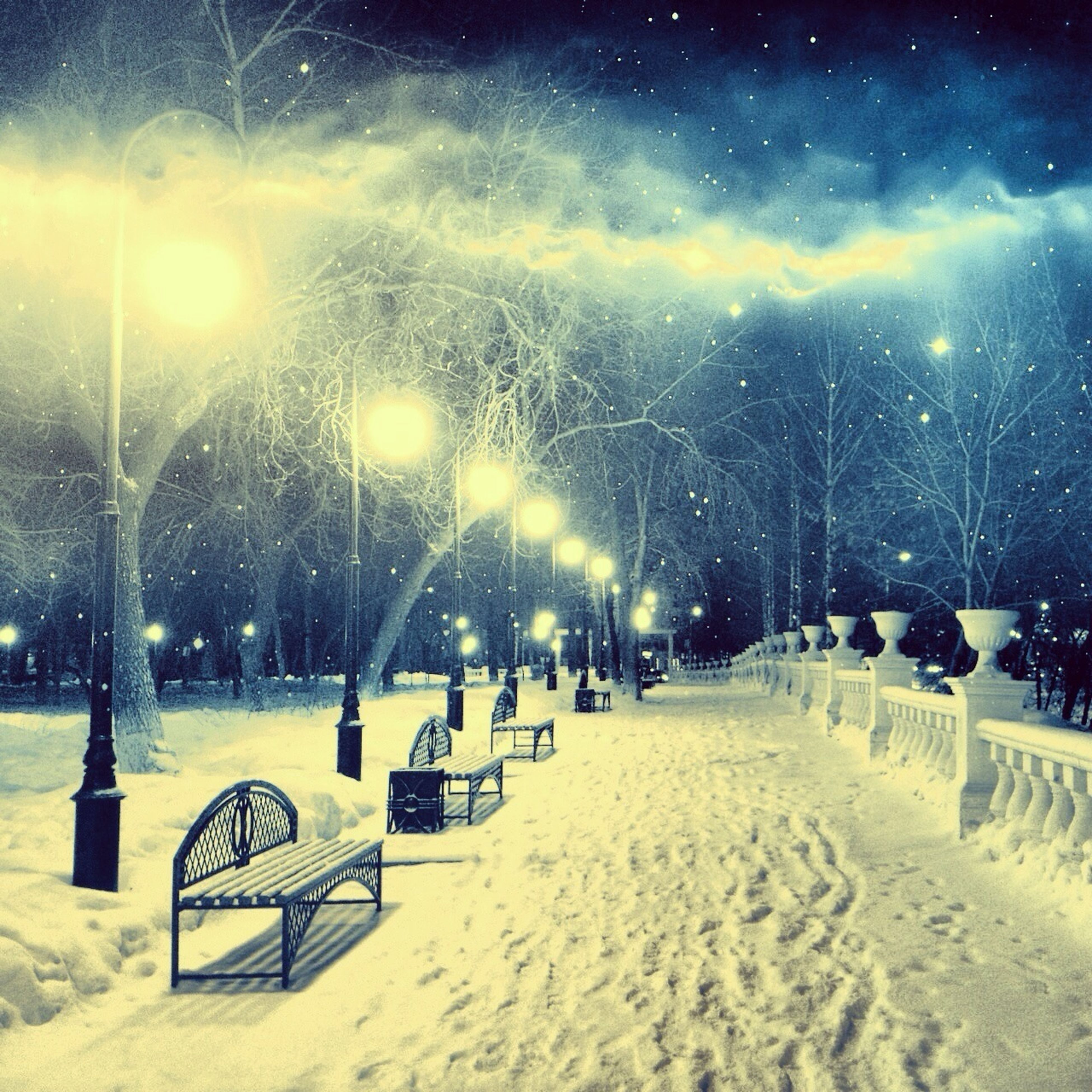 snow, winter, cold temperature, season, weather, night, illuminated, tree, covering, street light, landscape, leisure activity, nature, lighting equipment, large group of people, lifestyles, field, tranquility, white color