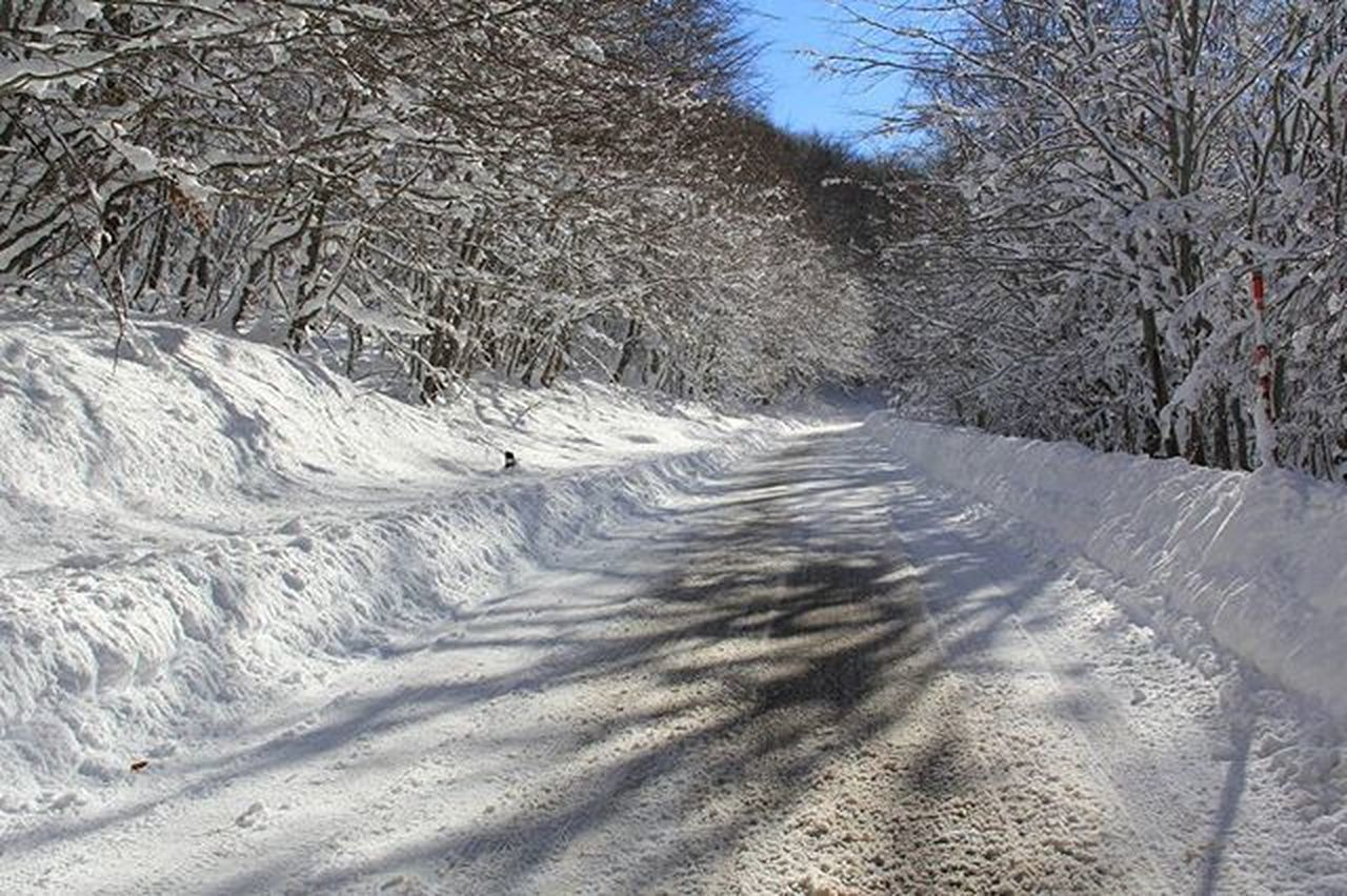 Boscodisantantonio Pyll Bosco Alberi Trees Peme Abruzzo Italia Inverno Snow Neve Landscapecaptures Landscape