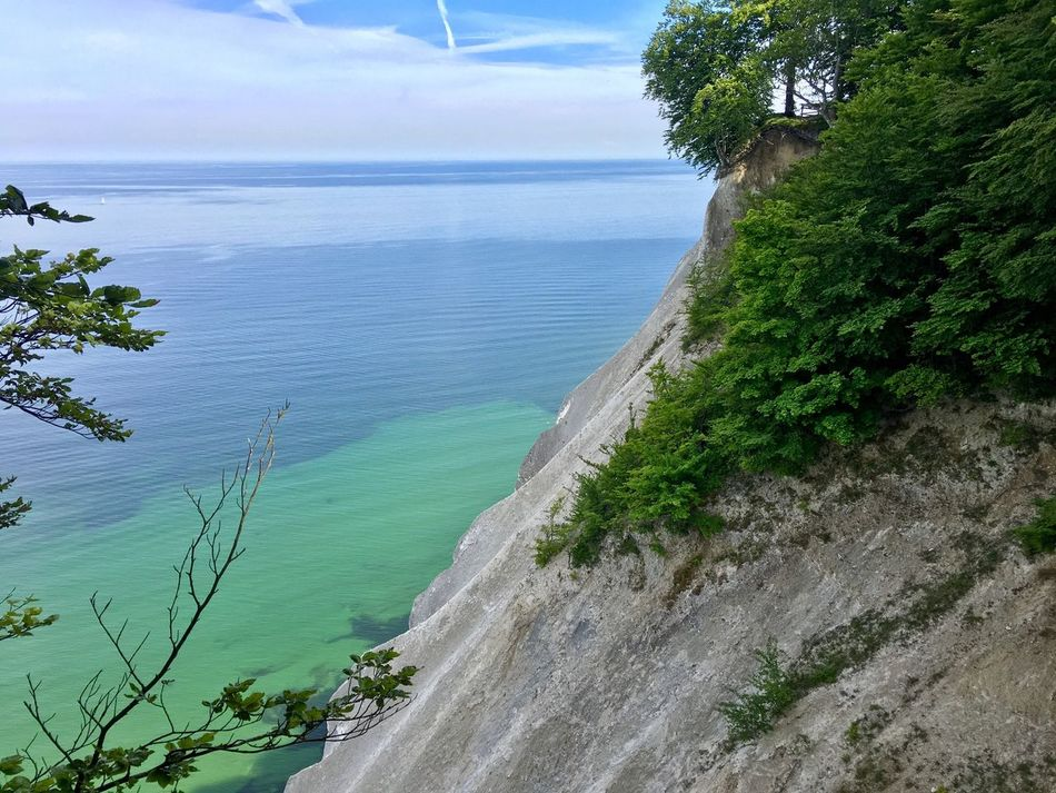 Sea Water Beauty In Nature Nature Scenics Sky Tranquil Scene Beach Tree Horizon Over Water Day Tranquility Møen Klints Denmark No People Cloud - Sky Outdoors Sand