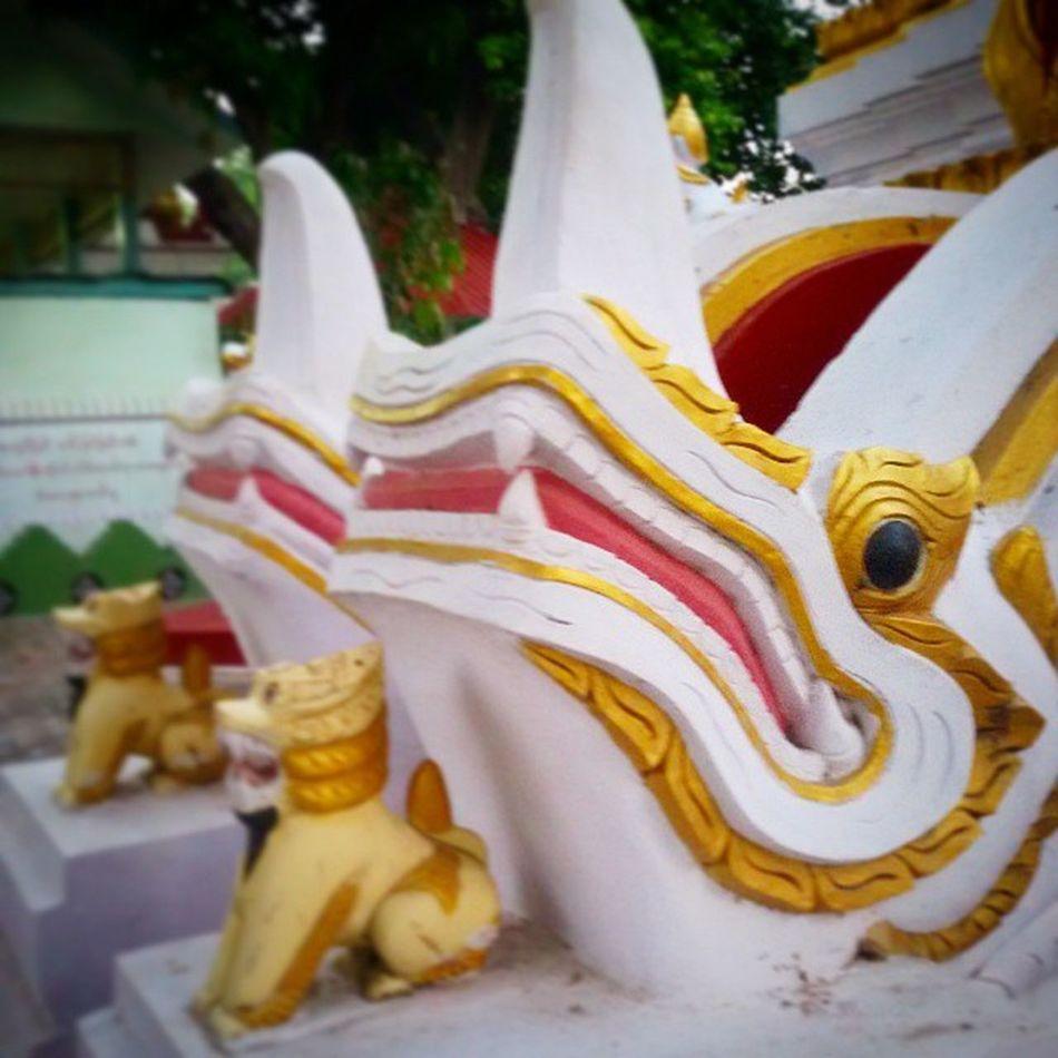 Mythical Creature ဒဏၭာရီလာ မကန္း Myth Creature Crocodile Lion Statue Sculpture Pagoda Pagroda Mythicalcreature Mandalay Myanmar Burma Burmeseigers Igers Igersmyanmar Igersmandalay Vscocam Vscomyanmar VSCO Ingersmandalay ingersmyanmar