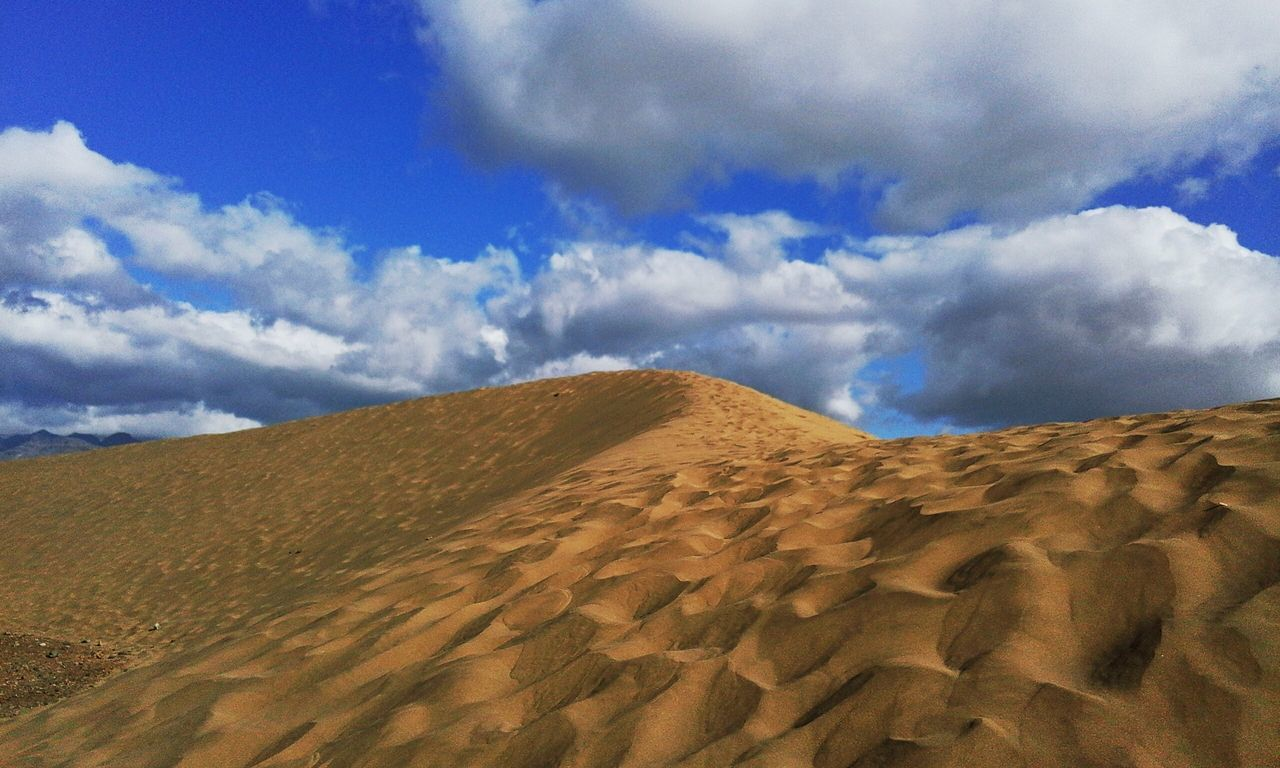 Shape of life Backgrounds Freshness Sky Nature Day Beauty In Nature Sand Fences Sand Dune Dunes Sand