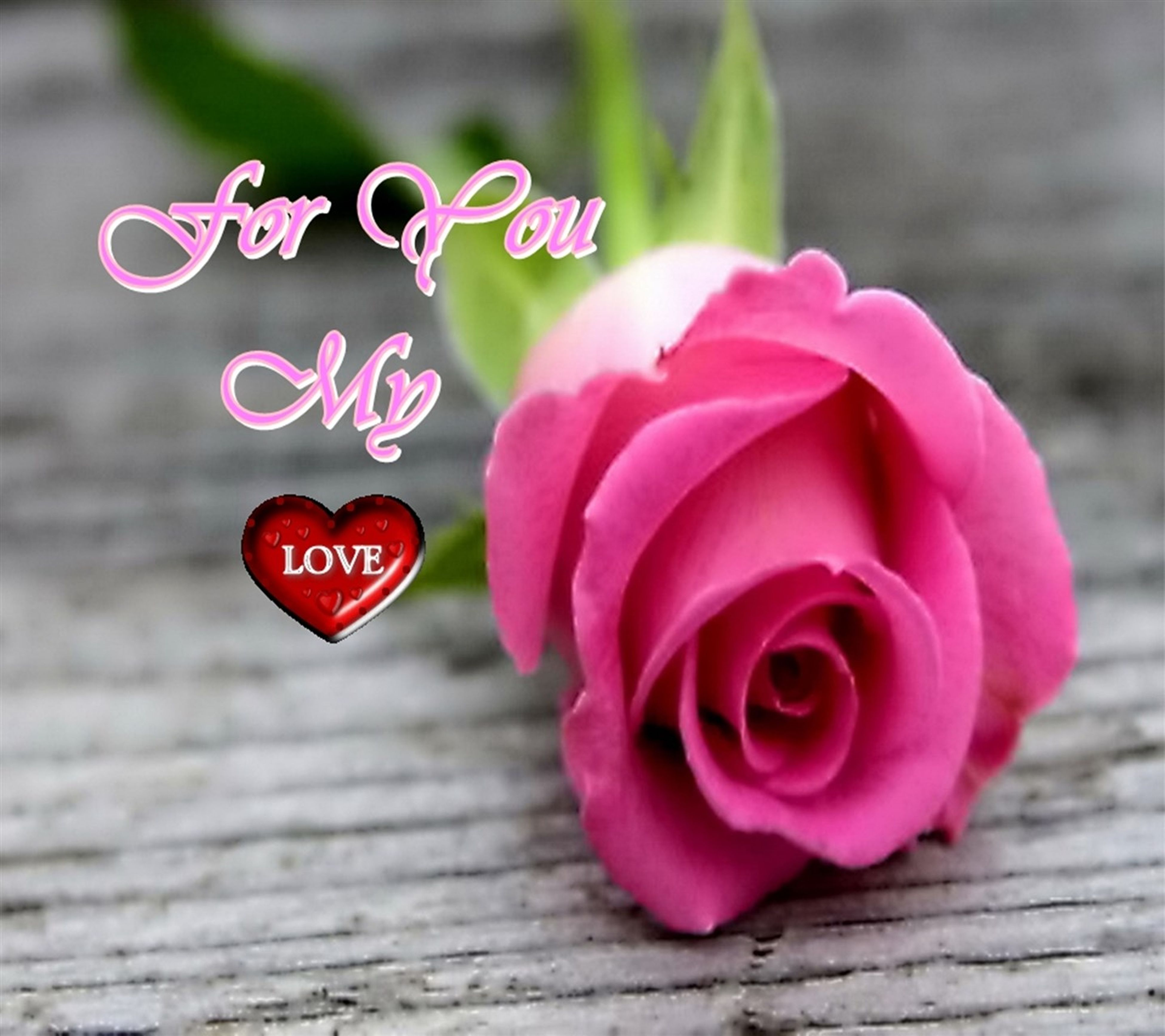 pink color, flower, text, close-up, red, focus on foreground, wood - material, western script, freshness, communication, wooden, petal, love, selective focus, table, indoors, no people, fragility, rose - flower, heart shape