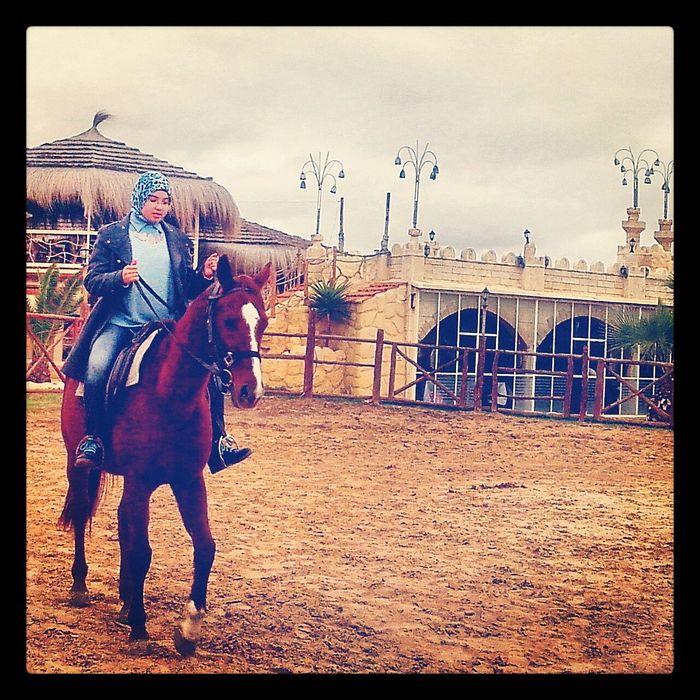 Vivre De Sa Passion , L'equitation ❤