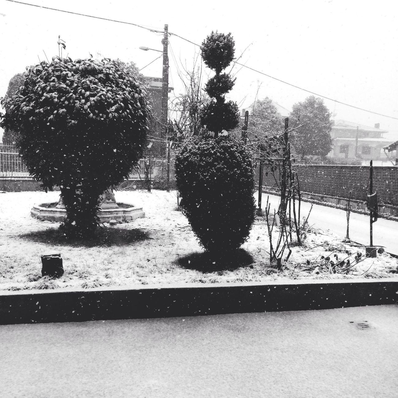 Snow Letitsnowletitsnowletitsnow Landscape Italy ❄️