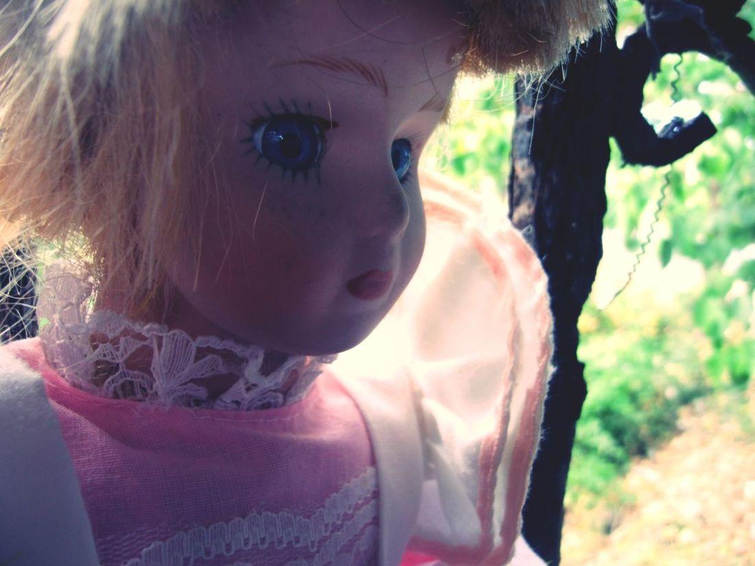 My first photo here on EyeEm :)