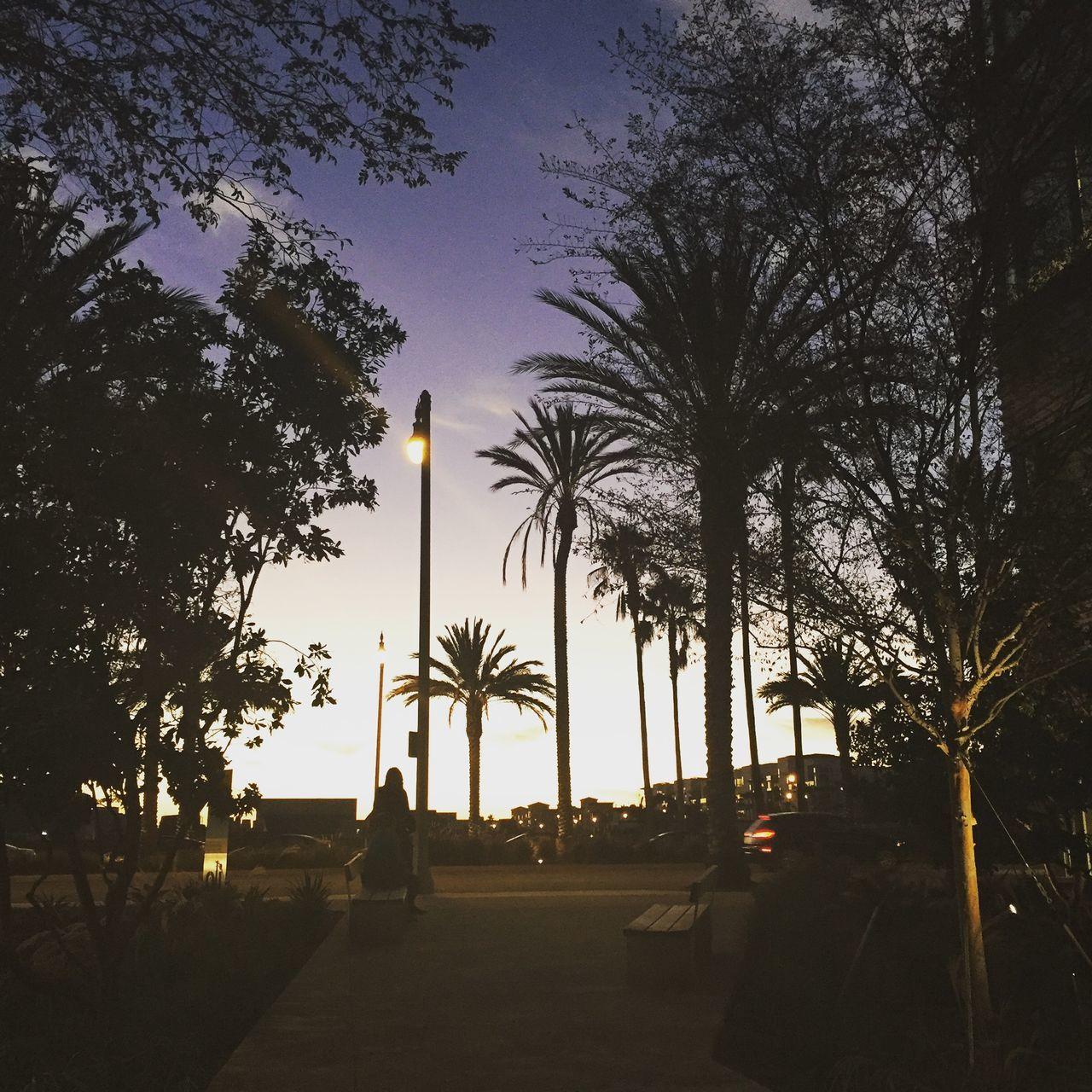 Fullscreen Playa Vista Silicon Beach La