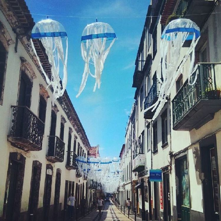 Jellyfish in the air! Jellyfish Pontadelgada Air Town Plastic Umbrella