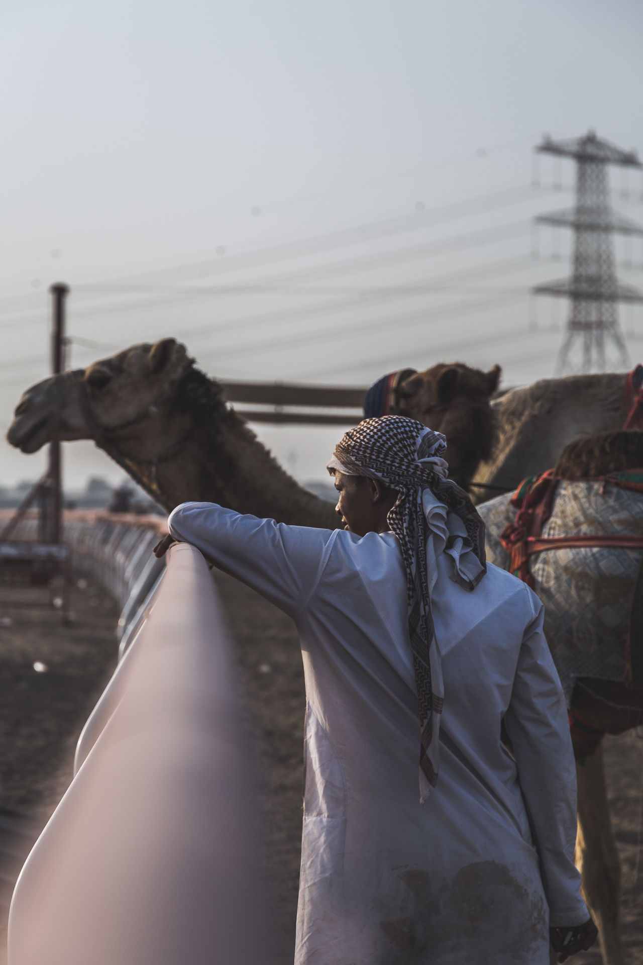 Camel Domestic Animals Eye4photography  EyeEm Best Shots EyeEm Gallery EyeEm Nature Lover Leisure Activity Mammal Men Nature One Animal One Person Outdoors People Real People Standing Weekend The Street Photographer The Street Photographer - 2017 EyeEm Awards The Photojournalist - 2017 EyeEm Awards