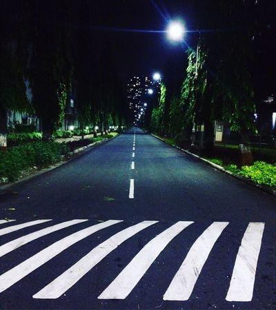 Road Marking Transportation Road Outdoors Tree The Way Forward Night Illuminated Men Nature Sky People