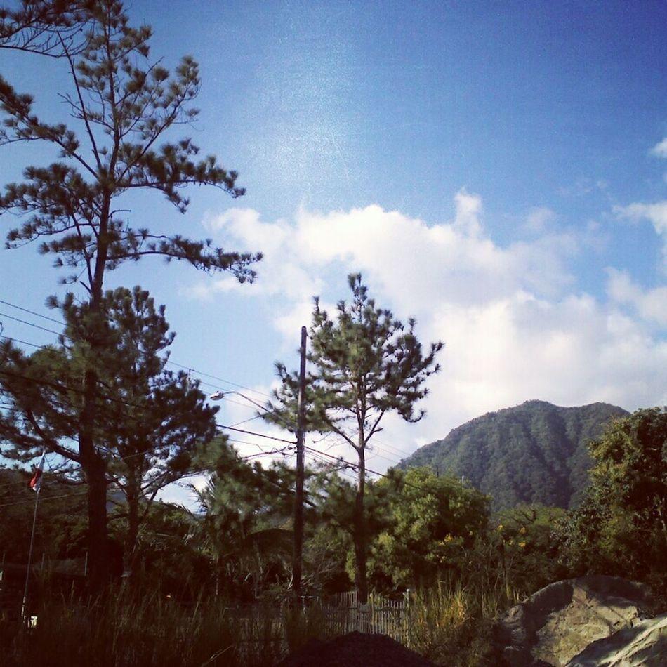 Landscapes, Paisajes
