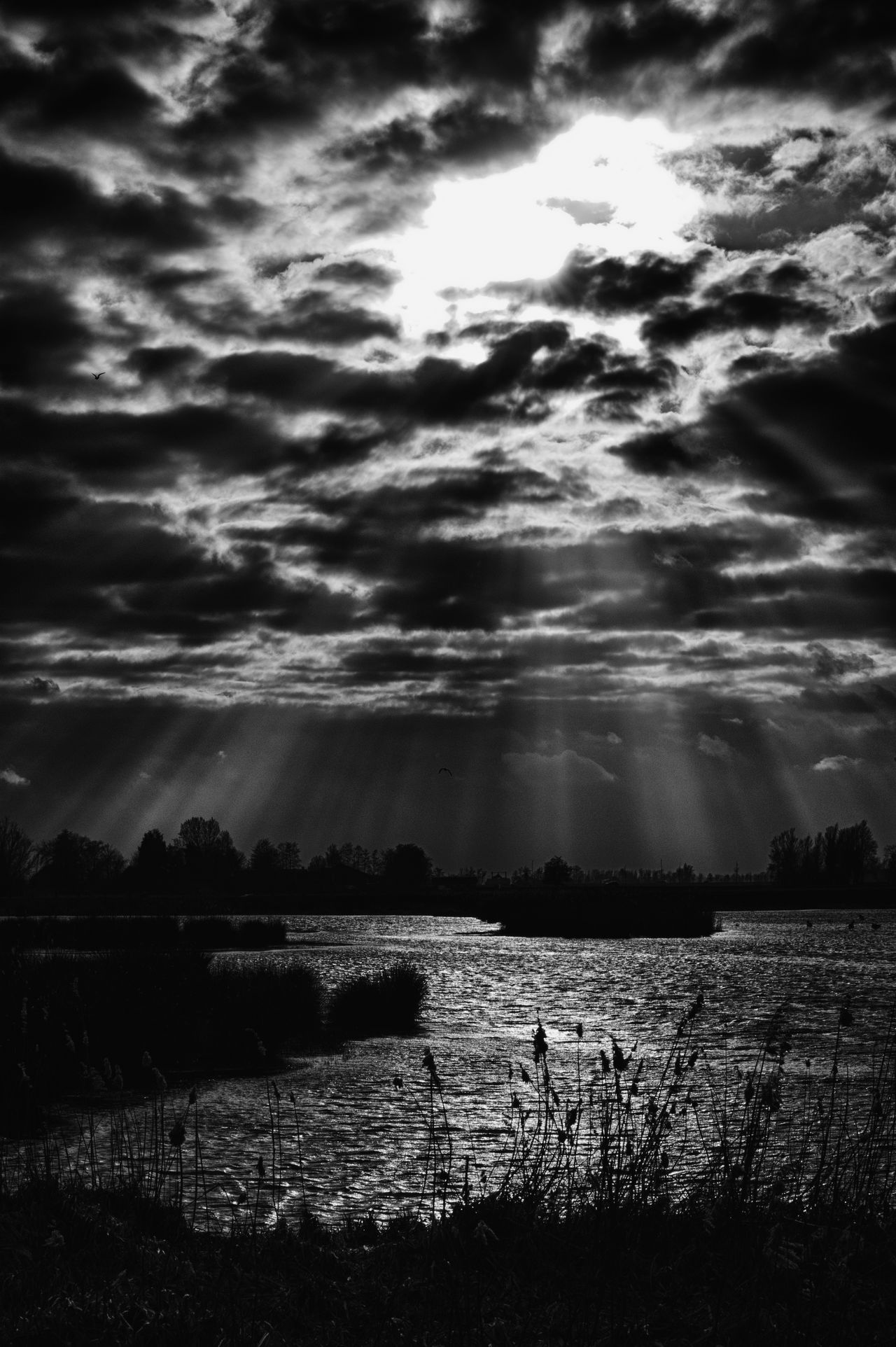 Heavon or hell Agriculture B&w Beauty In Nature Blackandwhite Cloud - Sky Cloudy Day Heaven Hell Landscape Monochrome Nature Nature No People Outdoors Rural Scene Scenics Silhouette Sky Storm Cloud Sun Sunrays Water