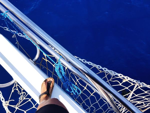 Human Leg Low Section One Person Directly Above Outdoors Sea Clearblue Water