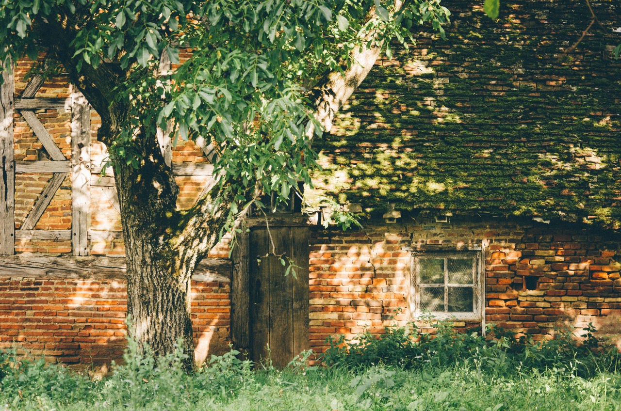 Architecture Bresse Brick Wall Building Exterior Built Structure Day Grass Green Color Growth House Nature No People Outdoors Timbered House Traditional Tree Window