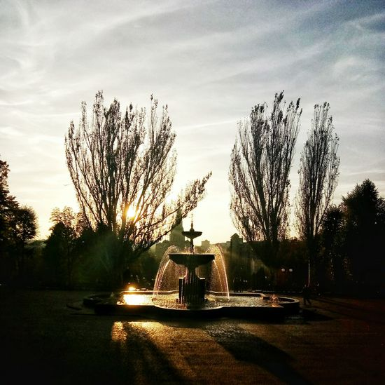 Sunlight Tree Park - Man Made Space Sun Tourism Fountain Sunset Park Water Sky Travel Destinations