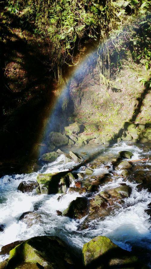 McDowell Creek Lebanon Linn County Oregon