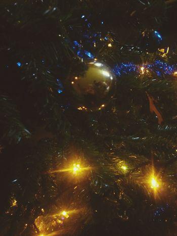 Christmas Tree Christmas Lights Ihatechristmas