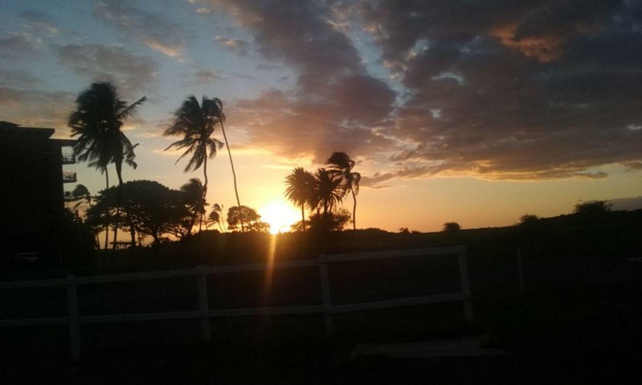 Sunset Beautiful Nature Island Living Island Life Taking Photos Maui Nokaoi Eye For Photography EyeEm Maui Hawaii Live Aloha Live Life To The Fullest Relaxing Enjoying Life Color Of Nature