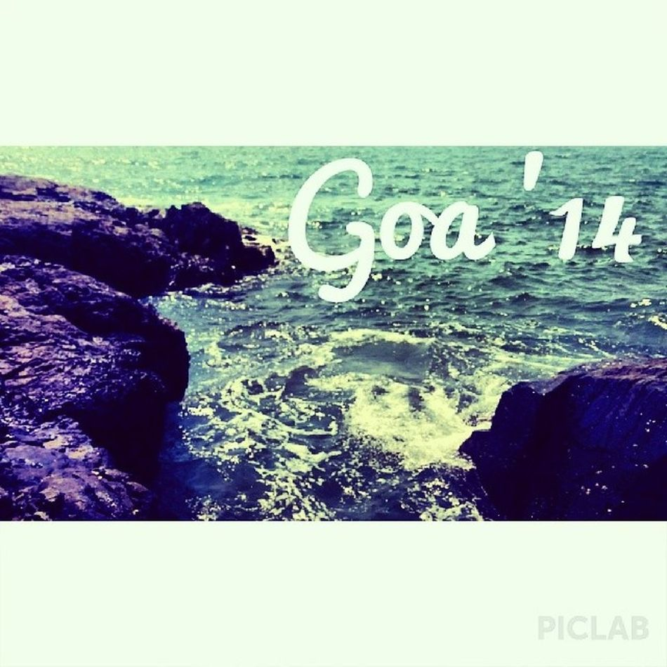 Oh my Goa. Goa Beach Instamood Instafun Picstagram Postcard Prawns GoodTimes Goodfood Happy Hatersgonnahate Chill Piclab