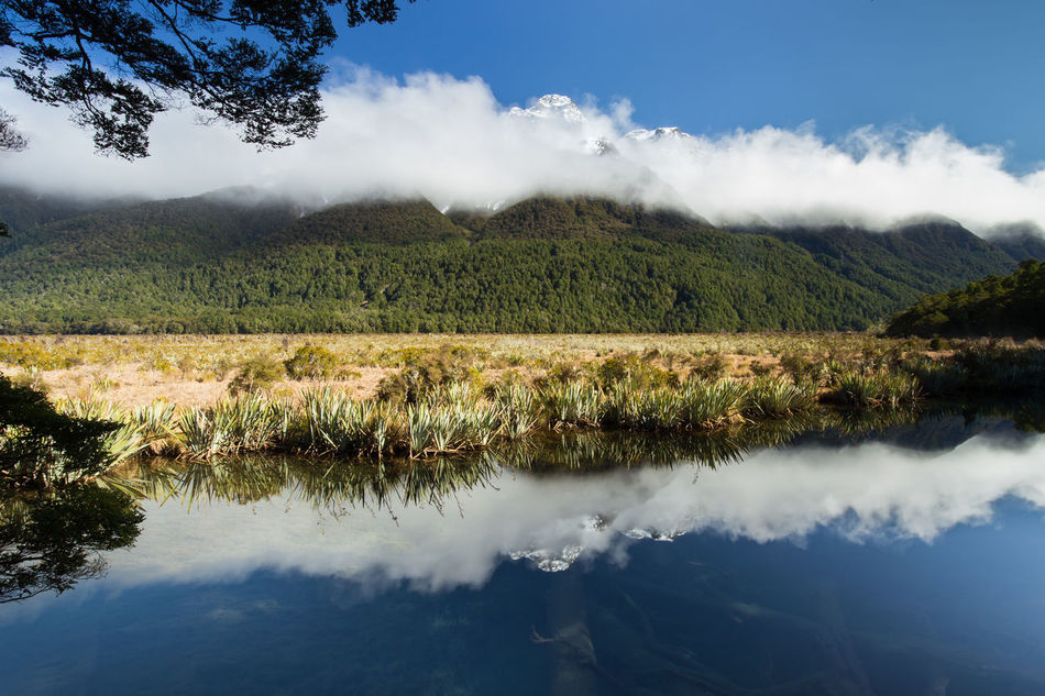 Mirror Lake, New Zealand Beauty In Nature Cloud - Sky Clouds Day Fiordland Lake Landscape Mirror Mirror Lake Mountain Range National Park Nature New Zealand No People Non-urban Scene Outdoors Reflection Reflection Lake Scenics Sky South Island Tranquil Scene Tranquility Tree Water