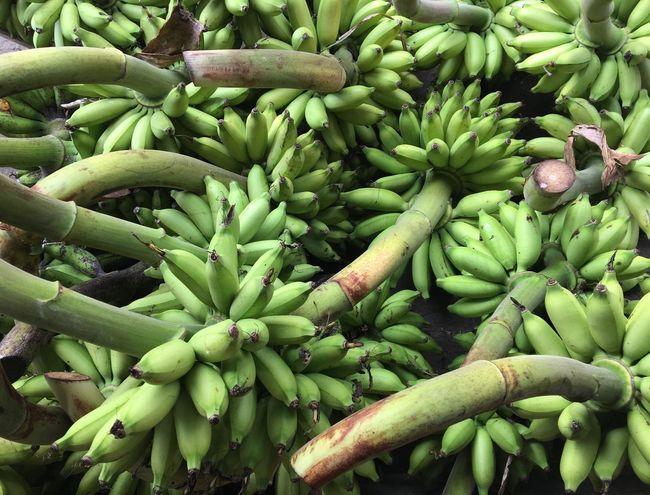 Going bananas! Bananas Going Bananas Fruits Green Fruits Plant Green Bananas Something Green