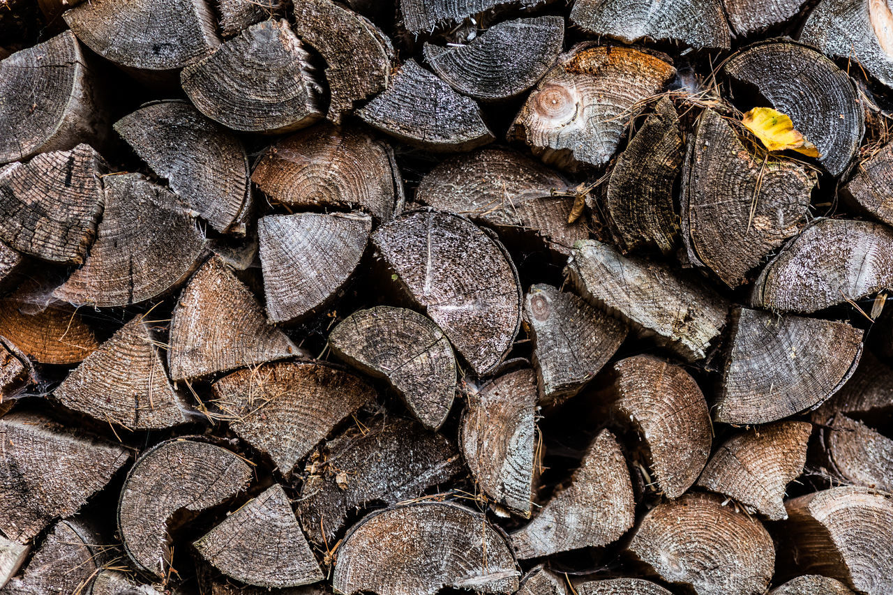 stack, full frame, backgrounds, log, large group of objects, timber, fossil fuel, lumber industry, abundance, woodpile, heap, deforestation, no people, wood - material, textured, fuel and power generation, close-up, forestry industry, day, outdoors