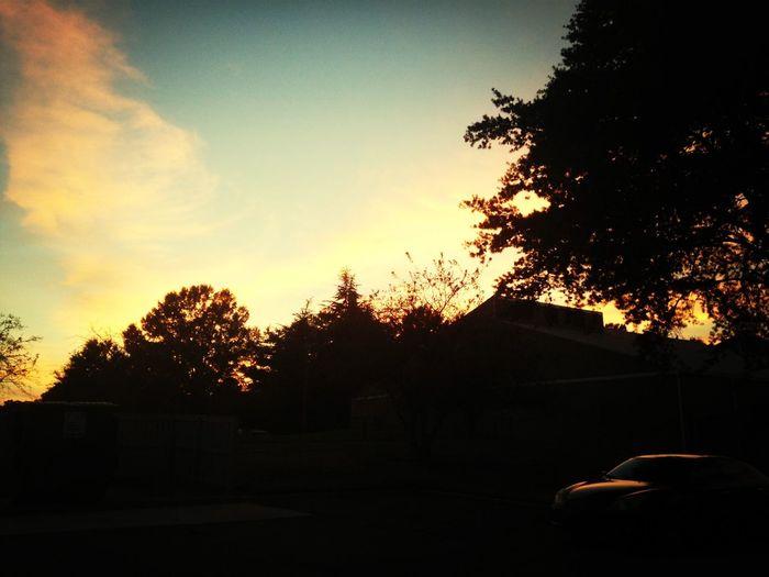Sunset Charlotte Sky