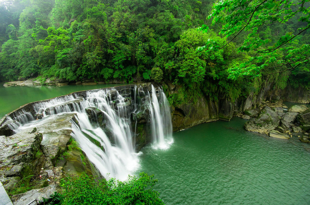 Shifen Waterfall, Taipei, Taiwan Beauty In Nature Forest Green Color Nature Outdoors Shifen Waterfalls Shifen_waterfall Tree Water Waterfall