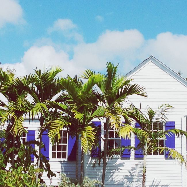 Palm Tree Architecture Sky Cloud - Sky Cloud Day Building Exterior Blue Outdoors Green Color Nature Tourist Resort Windows Architectural Detail Colors And Patterns No People Tourism Vacations Beauty In Nature EyeEm Best Shots