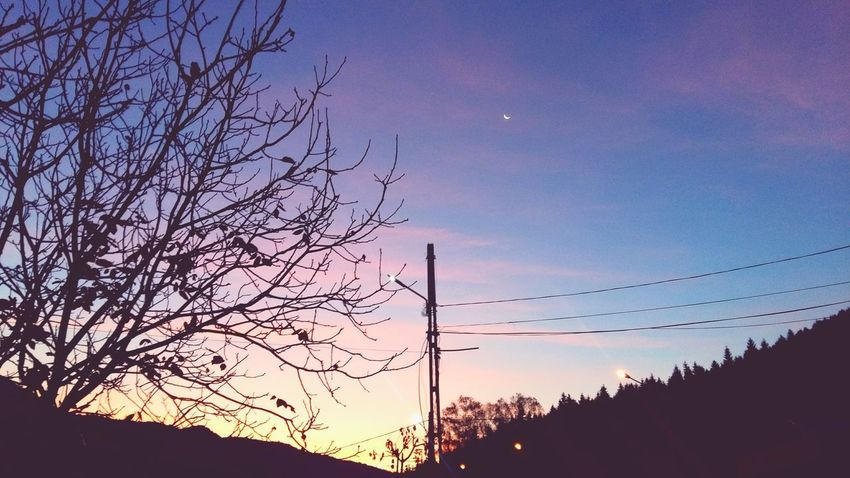Silhouette Sunset Tree Sky Nature Low Angle View Mountain Sunrise Beauty In Nature No People Scenics Technology Outdoors Flying Moon Bird Constellation Day Astronomy Galaxy Tranquility Pink Color Clear Sky Passion Moon Second Acts EyeEmNewHere