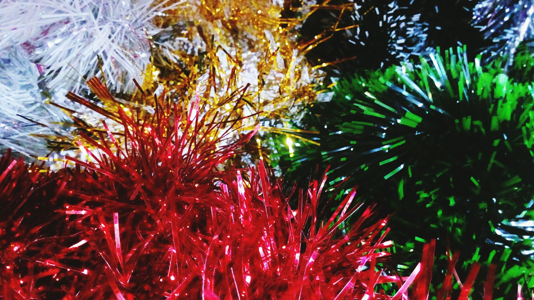 Green Color 🎄 Red Color 🎈 Yelow Color 🎁 Holyday Is Coming 🎉🎉🎉