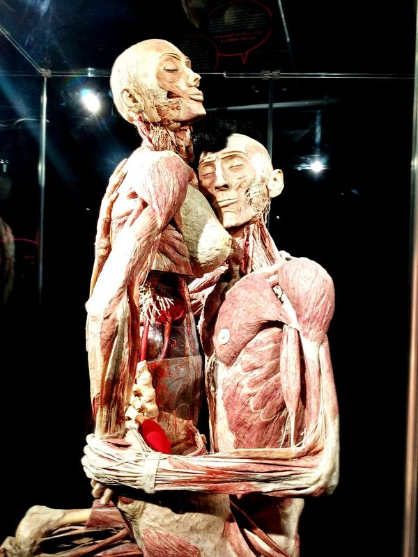 Taking Photos Check This Out Love People Photography Bodyworlds