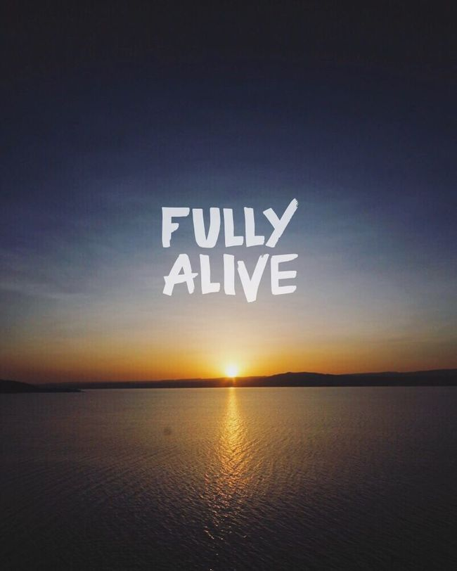 Its all in the picture 🤗 Fullyalive Bestofinstagram Bestoftheday BestofEyeEm Bestofover Overapp Sunrise Inspirational Quoteoftheday Feelalive Shinebright