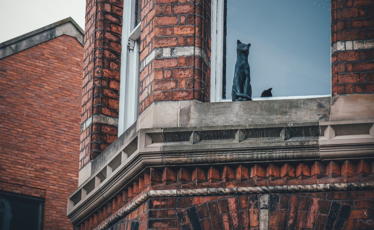Cat Statue Statue Red Wall Red Brick Red Brick Wall Built Structure Building Exterior Architecture Window No People Outdoors