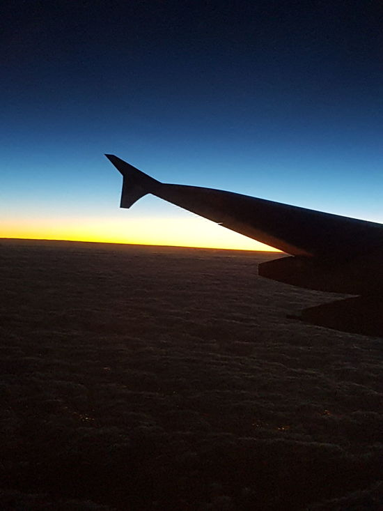 Airplane Sky Aircraft Wing Sunset Emirates Emiratesairlines A380-800 EyeEm Gallery