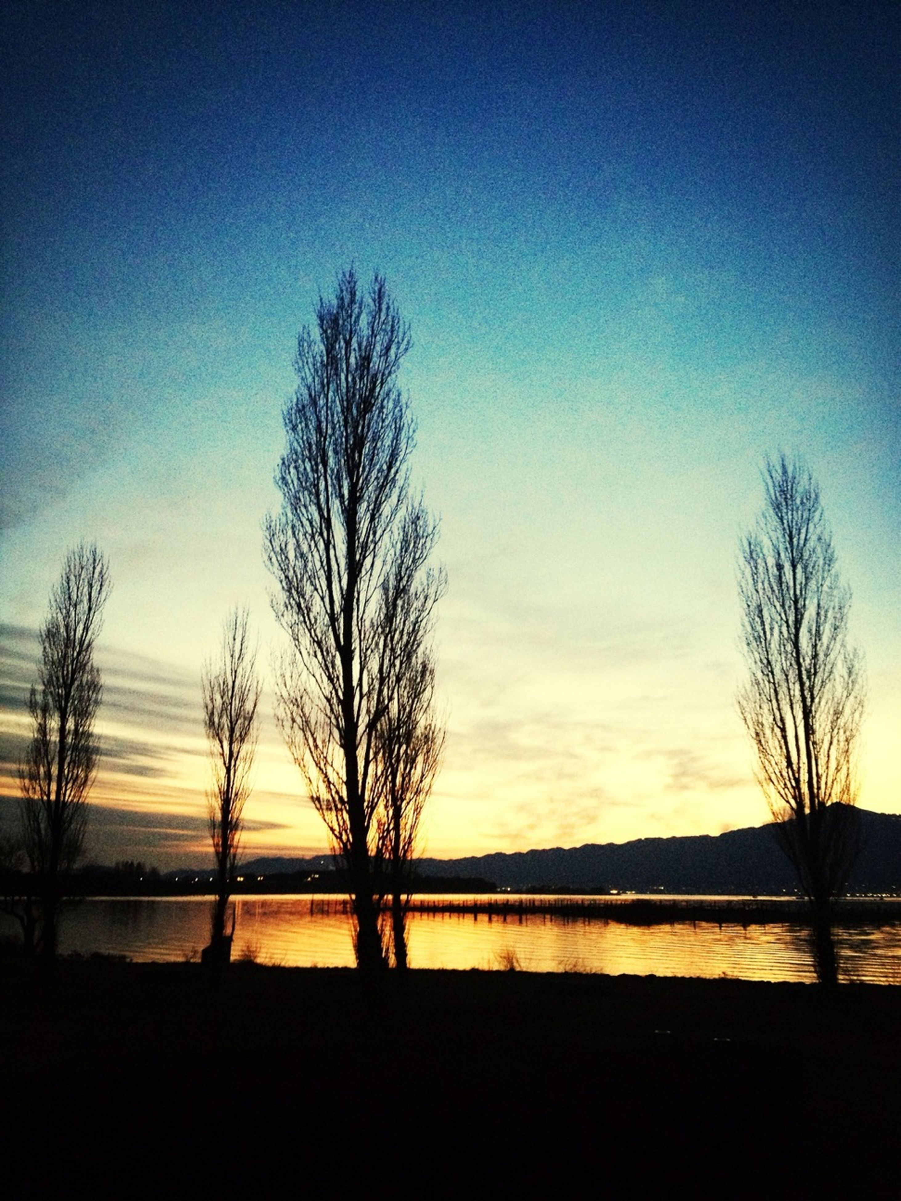 bare tree, silhouette, tranquil scene, tranquility, sunset, scenics, tree, water, beauty in nature, sky, branch, nature, idyllic, lake, tree trunk, blue, landscape, non-urban scene, reflection, outdoors